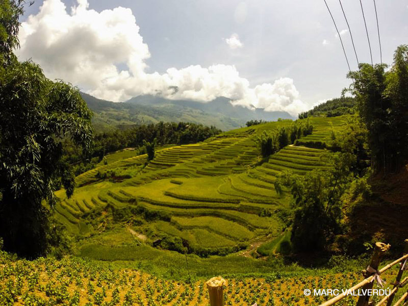 Viajar a Vietnam - Imprescindibles, Sapa